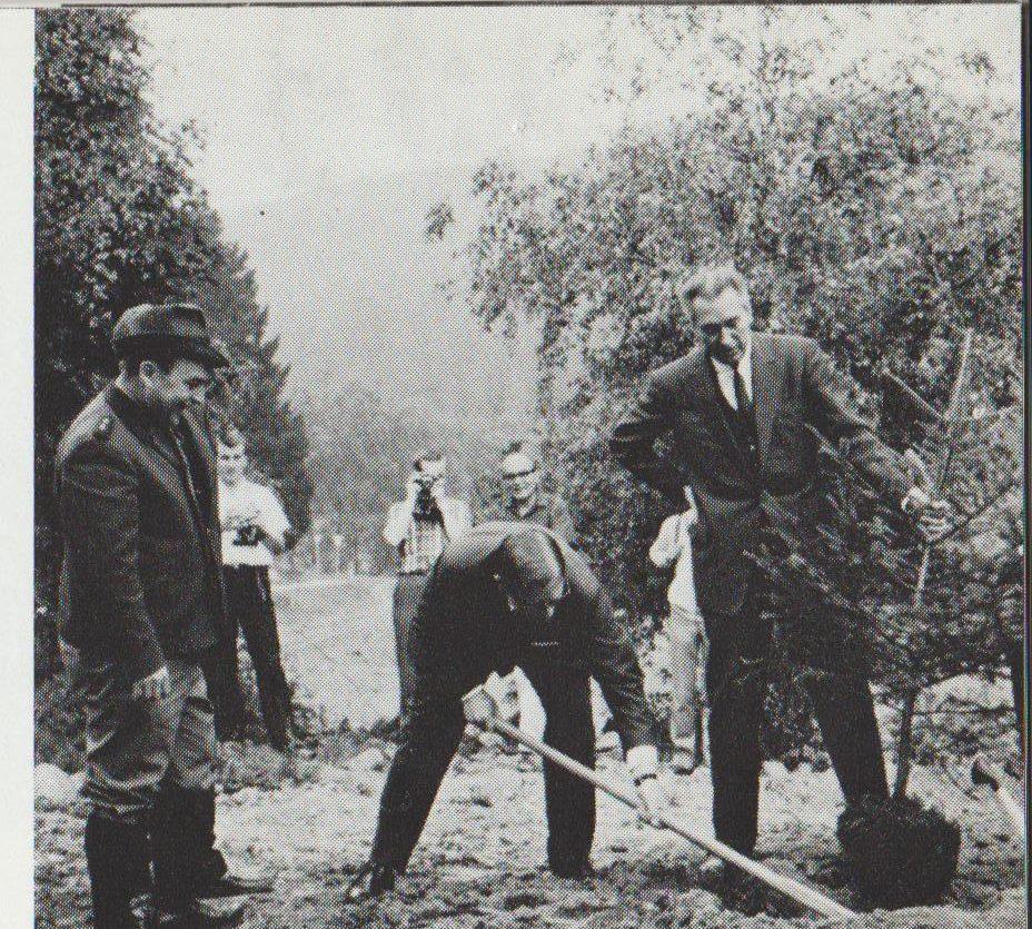 Pflanzen der Friedenstanne der zwei Verbänden ADTV und DTV mit den Präsidenten Gerd Hädrich und Wolfgang Kühle